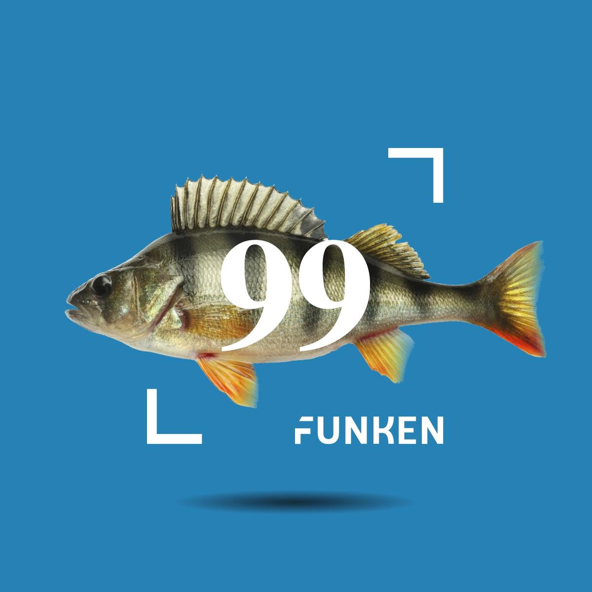 """Ostsächsische Sparkasse Dresden: Markenentwicklung """"99 Funken"""""""