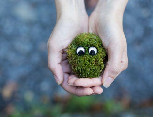 NABU: Zielgruppenanalyse und co-kreative Ideenentwicklung