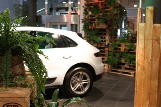 Fast wie ein weißer Tiger passt sich der Porsche Macan in die Location ein.